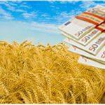 Какие реформы нужны украинским аграриям
