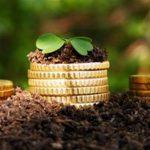 Риски аграрного бизнеса Украины