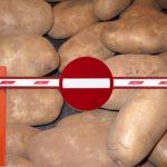 Россельхознадзор запретил ввоз до 2,7 тыс т голландского картофеля