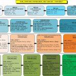 TEDIS UKRAINE (ООО ТК «Мегаполис-Украина») история мошенничества: амбарная книга и оффшоры