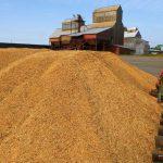 ГПЗКУ взял первый миллион тонн зерна