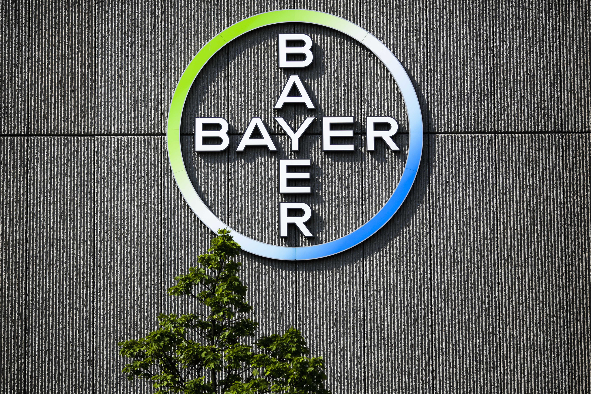 http://w-n.com.ua/wp-content/uploads/2016/09/Bayer-покупает-Monsanto.jpg