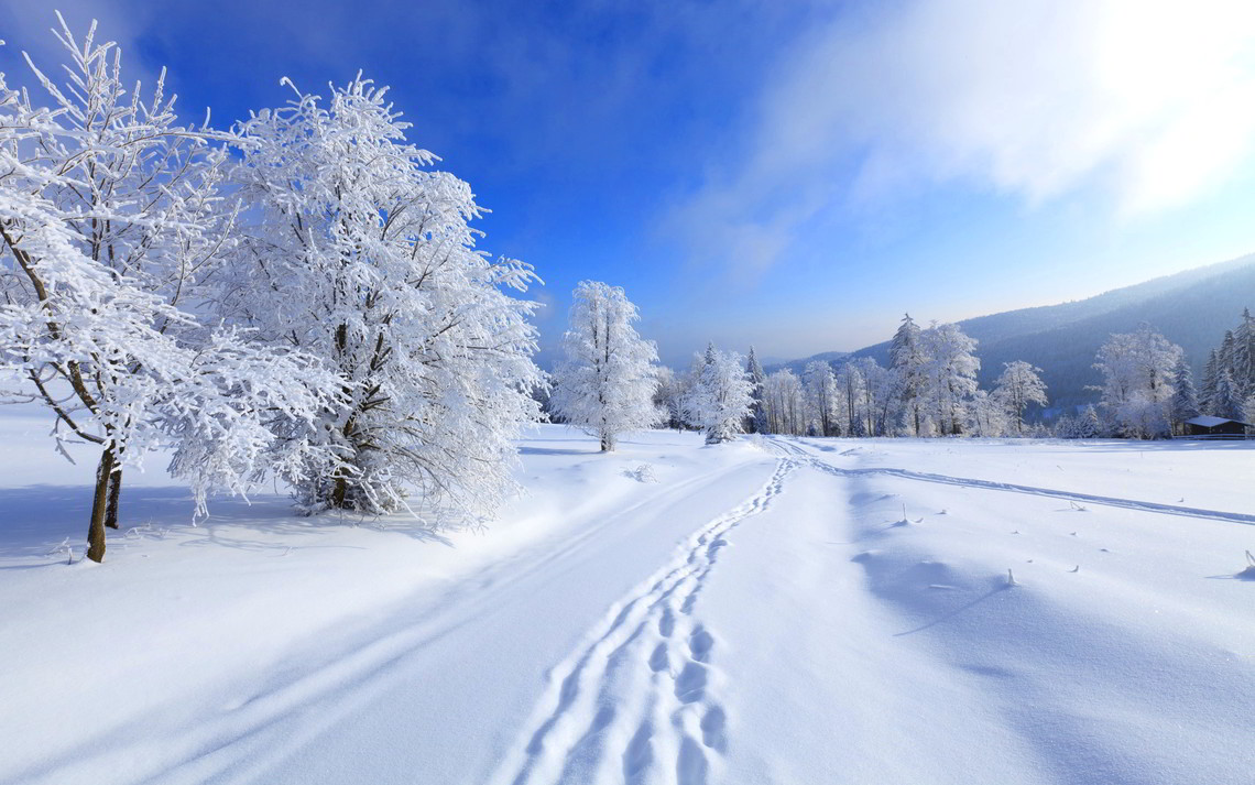 Погода в днепропетровски завтра