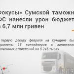 Фокусы Сумской таможни ГФС нанесли урон бюджету на 6,7 млн гривен