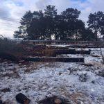 Полиция проигнорировала суд по незаконной вырубке леса в Харькове