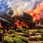 Масштабные пожары в Греции: число погибших возросло до 91 человека