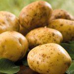 Такой низкой цены на молодой картофель украинцы не видели уже три года