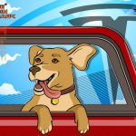 В Tesla исправили опасную ошибку «Dog Mode»