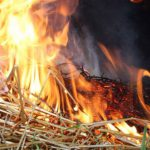 В Одесской области 5-летний мальчик сжег себя в стогу сена