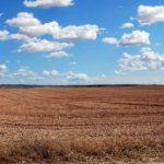 На поддержку фермеров в Госбюджет-2020 заложат 4 млрд гривен, — Милованов