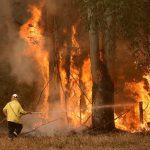 Новая волна пожаров охватила территорию Австралии