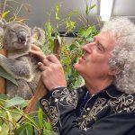 Гитарист группы Queen устроил концерт для спасенной от пожара коалы в Австралии