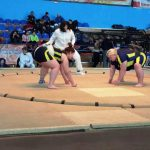 Спортсмены Бахмута стали призерами чемпионата Украины по сумо