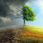 Богатые люди виноваты в изменении климата — британское исследование
