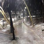 Погода в Харькове 14 марта