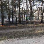 В Красноградском лесхозе произошел пожар