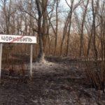 «Незначительное тление»: в Чернобыльской зоне более 400 спасателей тушат отдельные очаги