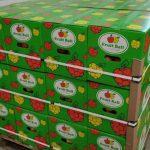 Яблоки с Донетчины экспортируют в Катар: какие поставки еще обсуждаются
