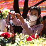 Впервые за более чем два месяца: в Южной Корее не зафиксировали новых случаев заражения COVID-19 внутри страны