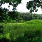 В Донецкой и Луганской областях планируют развивать туризм: подробности
