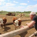 Правительство утвердило программу финансирования по развитию фермерских хозяйств Донбасса