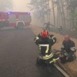 На Луганщине идет работа по очагам возгорания в Боровском лесничестве: фото