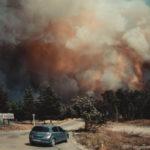 На Луганщине пожаром уничтожено около пяти тысяч гектар леса