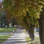 Погода в Харькове 10 августа