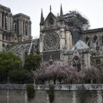 Стало відомо, коли відкриють собор Нотр-Дам у Парижі