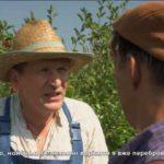 Канал «1+1» повернув трансляцію «кварталівського» серіалу «Свати» російською